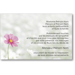 Carte de Remerciements - PAY5