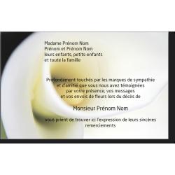 Carte de Remerciements - PAY1